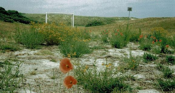 Das Texastal: Unberührt