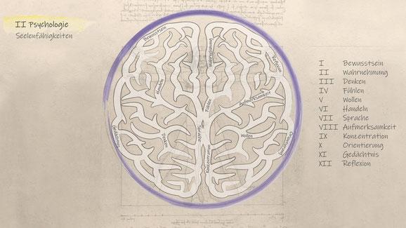 Psychologie Seelentätigkeit