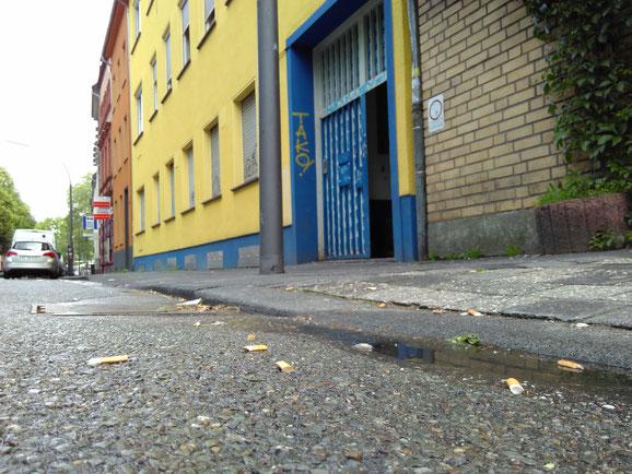 Blick auf die Genovevastraße an der TAS. Zigarettenkippen auf der Straße.