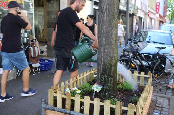 Ein neu angelegtes Beet mit Zäunchen. Hier stellt keiner mehr sein Fahrrad ab und lässt es dort zum Wrack werden.