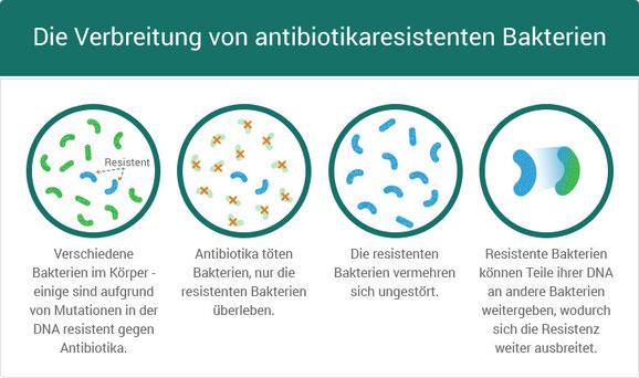 Entstehung von Antibiotikaresistenzen Bildquelle: www.121doc.de