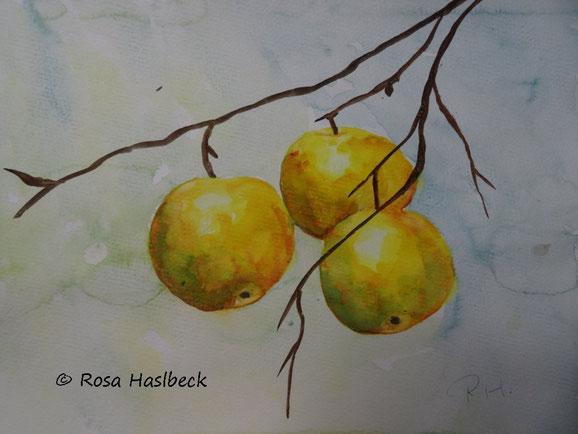aquarell, stillleben Aquarell äpfel, obst, herbst, baum, bild, kunst, malen