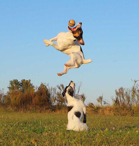 прыгающие люди в фотографии-25