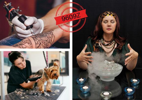 Professions regroupées dans le code APE 9609Z (tatoueur, toiletteur canin, médium...)