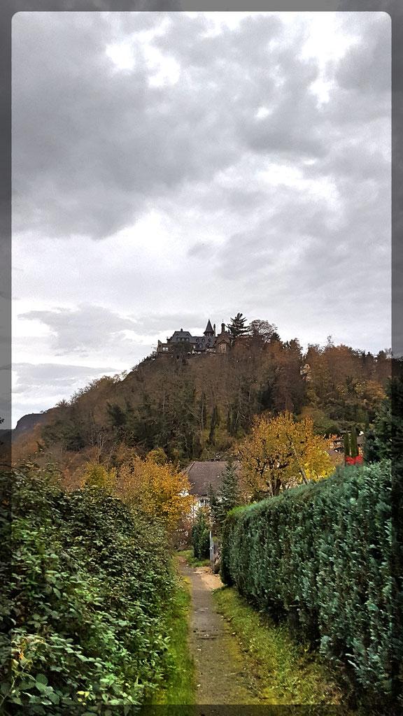 Vom Abstieg nach Linz bietet sich ein letzter Blick hinauf zur Burg Ockenfels
