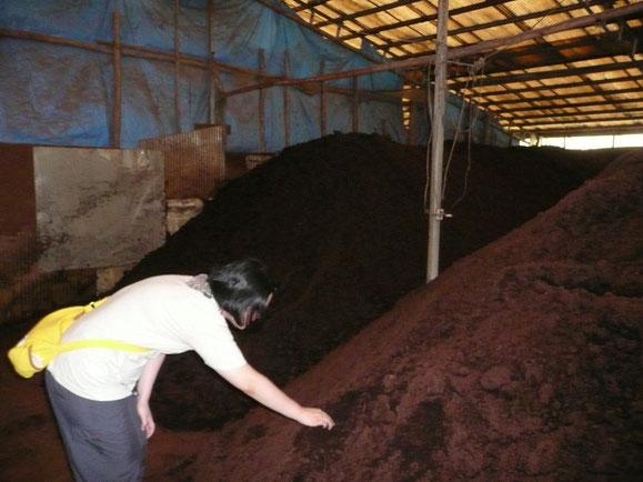 堆肥の確認をする妻