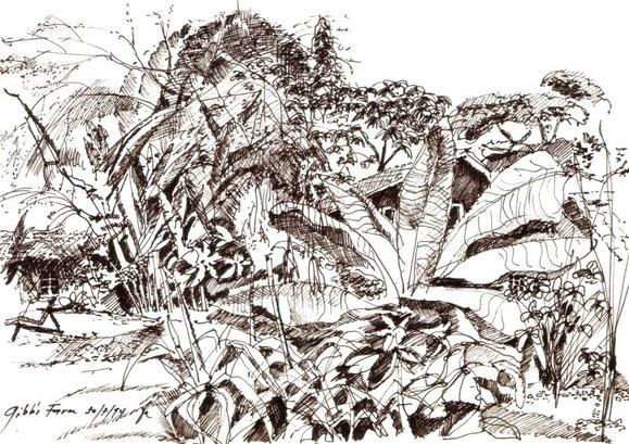 Gibbs Farm, Serengeti 1994 (Filzstift)
