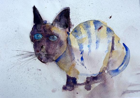 Katze 2005 (Aquarell)