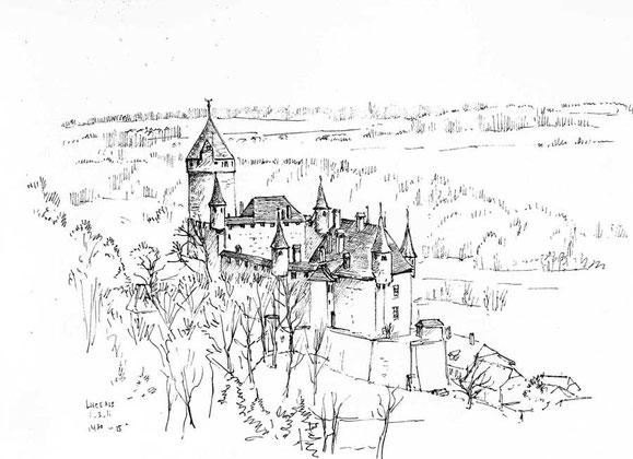 Schloss Lucens von Martin