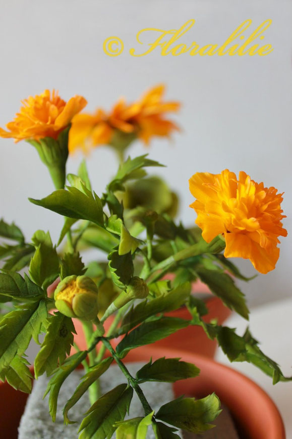 Tagetes aus Zucker von Floralilie