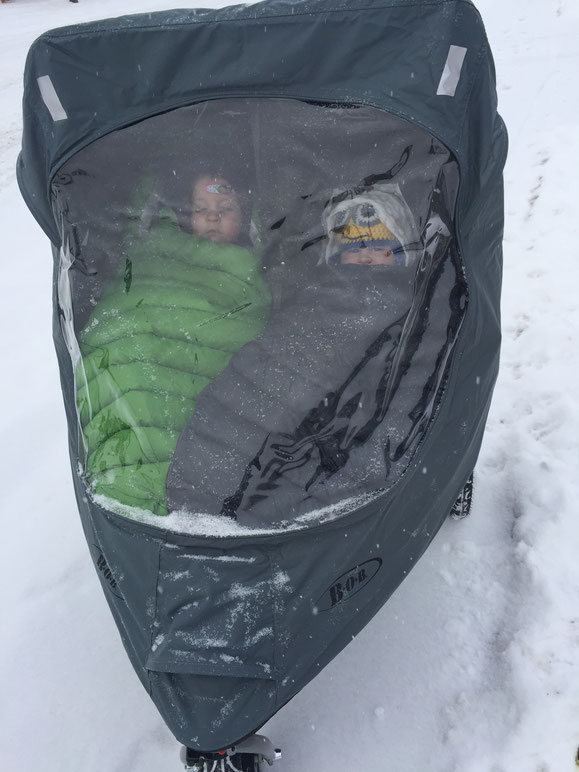Bob Stroller with weather shield