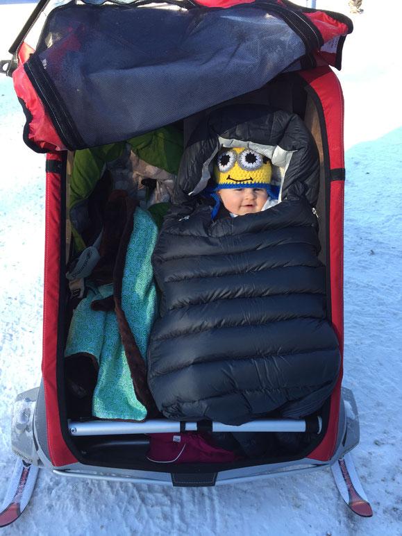 Baby in MEC Stroller bag in Thule Chariot