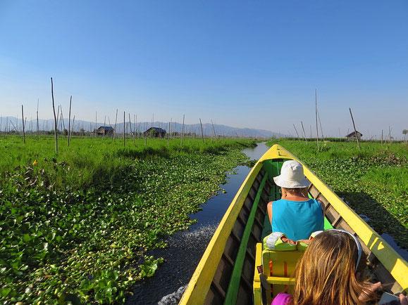 Mit dem Boot durch die schwimmenden Gärten am Inlesee.