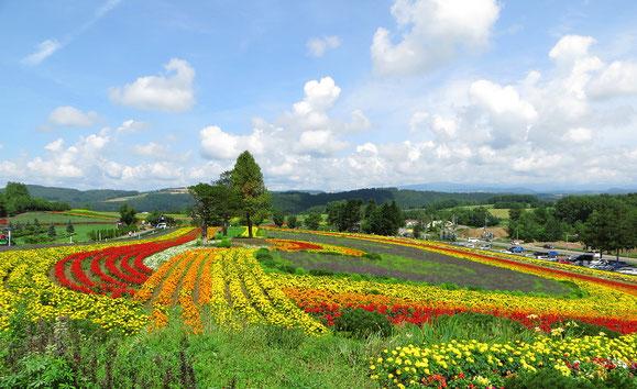 In der Nähe von Furano besuchen wir ein Blumenparadies.