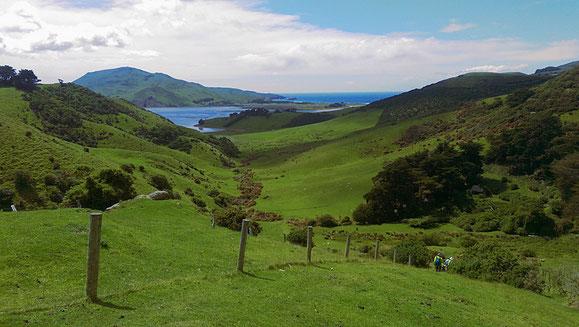 Unterwegs auf einer Tageswanderung in der Nähe von Dunedin.