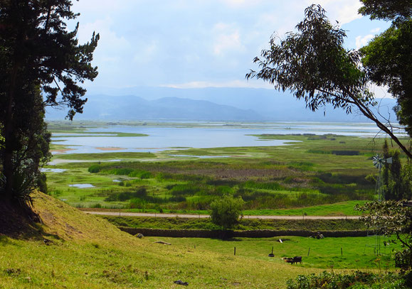 Laguna de Fuquene zwischen Chiquinquira und Ubate.