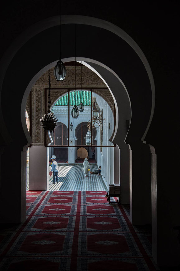 Tour in Marocco - Fez
