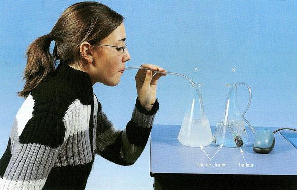 Conséquences de l'expiration d'air dans de l'eau de chaux.
