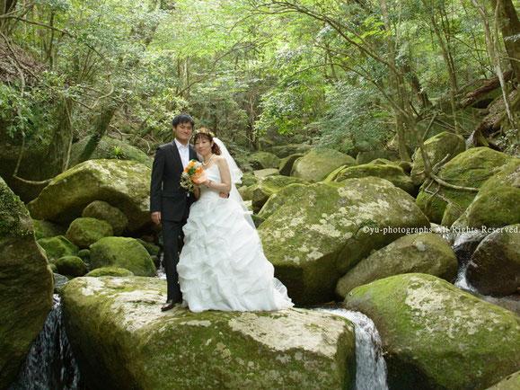 yu-photographs,ウェディングフォト,yakushima