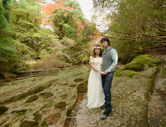 yu-photographs ウェディングフォト屋久島