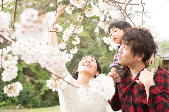yu-photographs 屋久島 家族写真