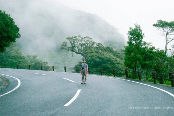 yu-photographs,yakushima