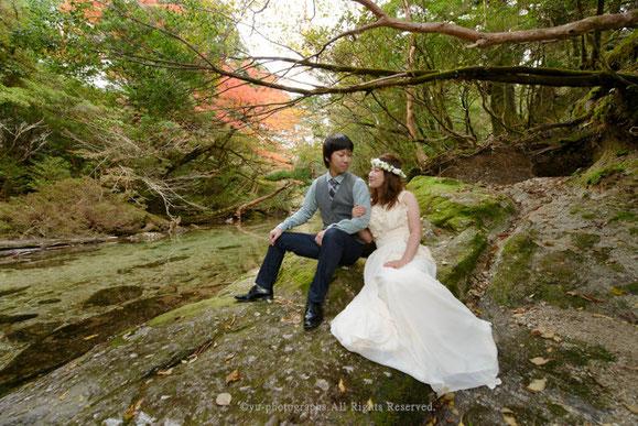 yu-photographs ウェディングフォト 屋久島