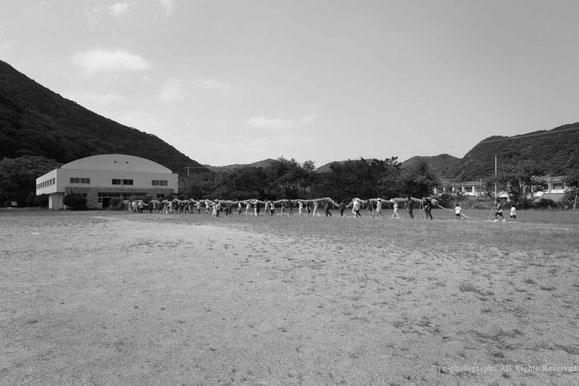 yu-photographs,屋久島,一湊綱綯い