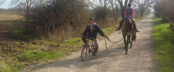 Cómo disfrutar de manera segura de la companía de tu caballo
