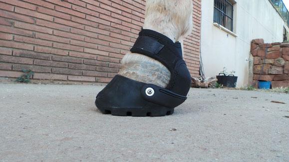 Botas para caballos - solamente necesario con caballos sensibles en terrenos duros