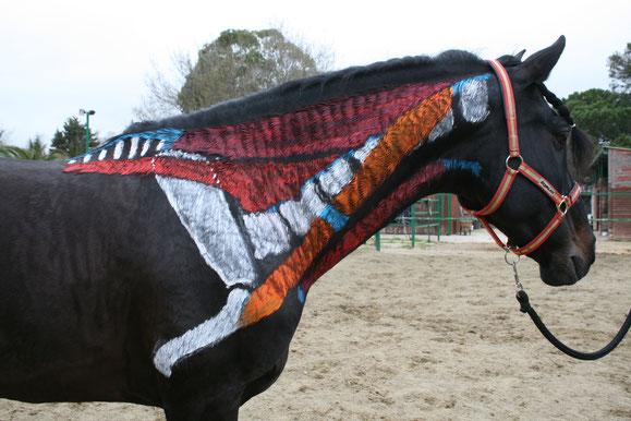 Anatomía del caballo: el esquelto y los huesos de las manos (extremidades anteriores) del caballo