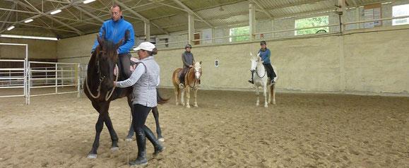 Después del trabajo en libertad y pie a tierra, transferir el lenguaje corporal del jinete y de la rienda a caballo para una comunicación más clara y fácil de entender para el caballo