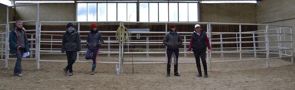 La capacidad de observación es un aliado muy importante en el entrenamiento del caballo
