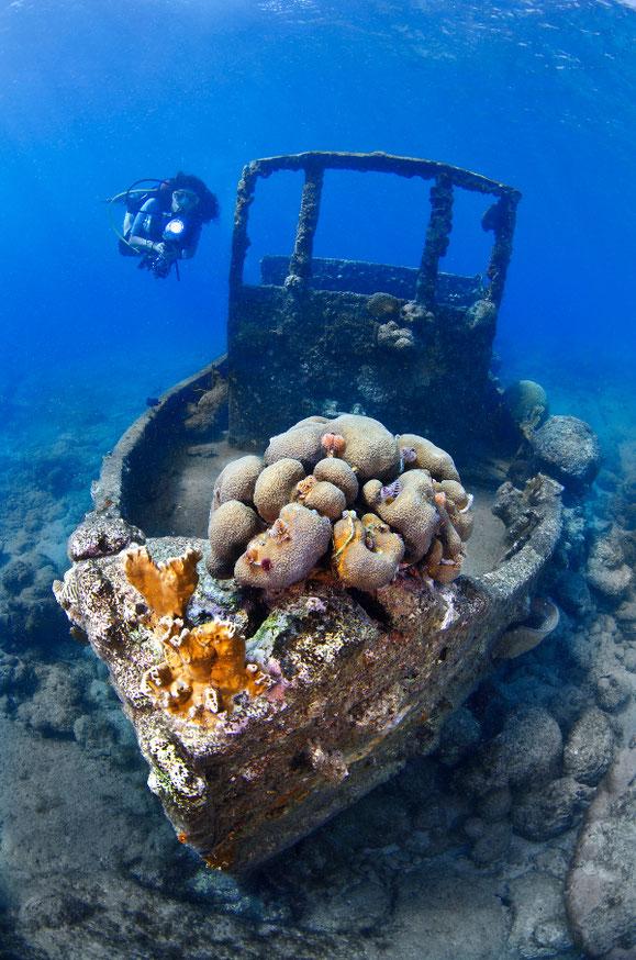 Tugboat, Curacao, Karibik, Karibische Inseln