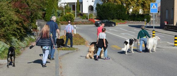 Start in Obergösgen