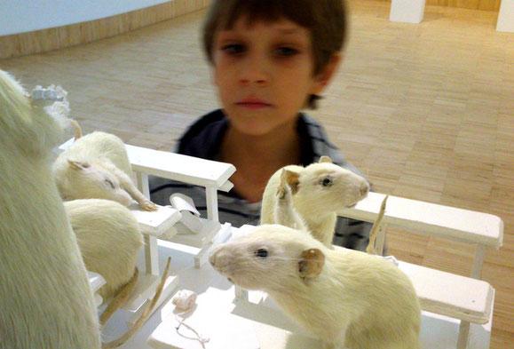 """Von Karl Kraus die Vorlage, im Essl-Museum die Ausstellung dazu: """"Die letzten Tage der Menschheit"""", ausgestopfte Laborratten als Darsteller. Kunstkritik von Frank Butschbacher, und eine Gasthausempfehlung."""