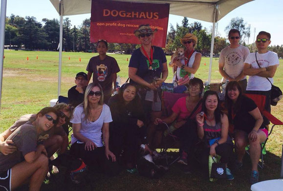 Team DOGzHAUS for Race for the Rescues at Rose Bowl in October 24