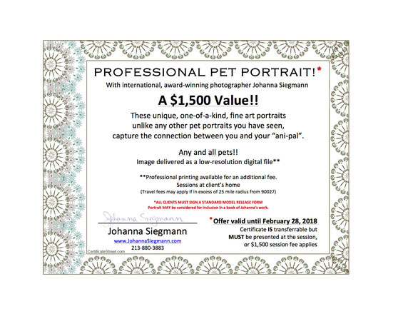 ITEM #3: PROFESSIONAL PET PHOTO PORTRAIT! (VALUE $1500)
