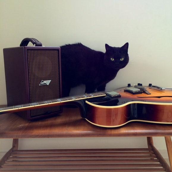 ジャズギターアンプ