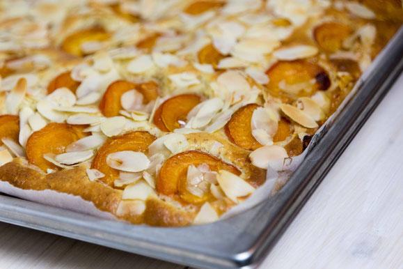 Steamhaus - Rezept für Kombi-Steamer und Dampfgarer: Aprikosen-Blechkuchen.