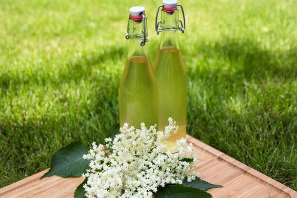 Steamhaus - Rezept für Kombi-Steamer und Dampfgarer: Holunderblüten-Sirup.