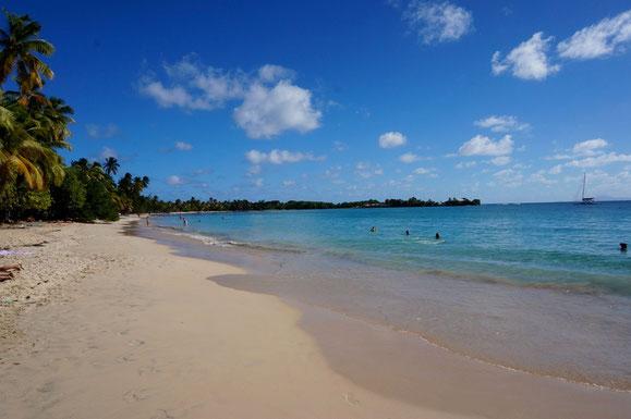 Plage des Salines (Martinique)