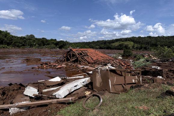 La distruzione di un milione di metri cubi di fanghi tossici dispersi dal crollo di una diga nella provincia mineraria di Minas Gerais.