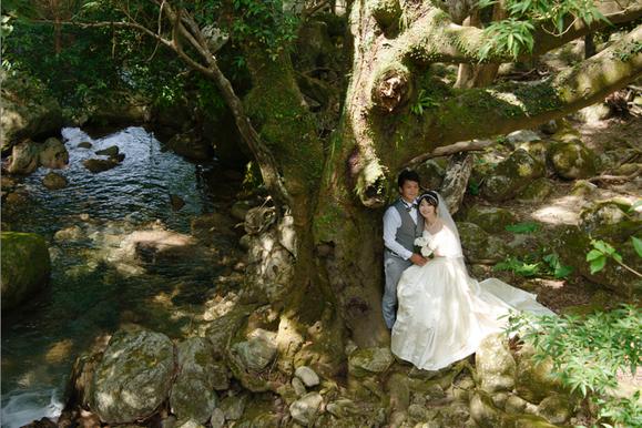 屋久島の森でウェディングフォト, yu-,wedding photo, yakushima, japan,屋久島ガイド山好き