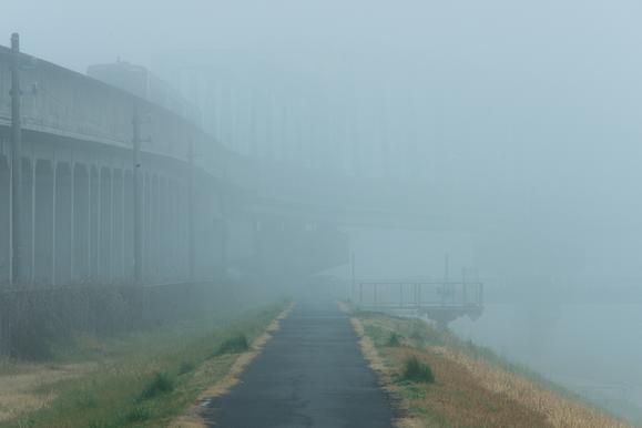 yu-,photographer,yakushima,japan,yu, a dense fog,Y.P.F