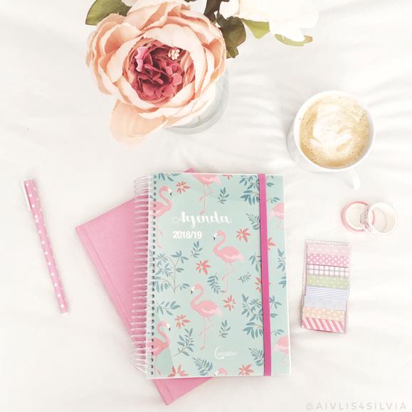 papelería, bonita, instagram, agenda, bullet journal