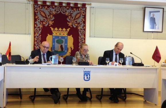 Pleno municipal de Vicálvaro de enero de 2014 (El Distrito)