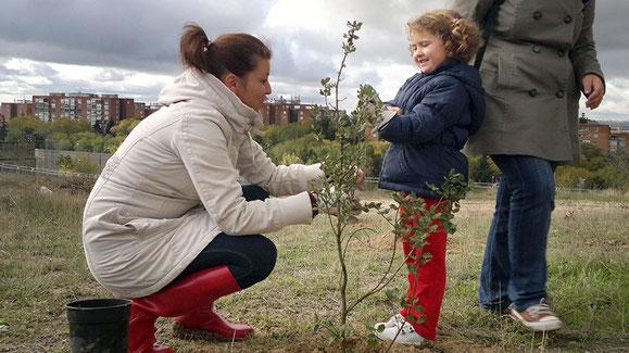 Dos vecinas plantando un árbol en el cerro de Almodóvar (cerroalmodovarverde.blogspot.com)