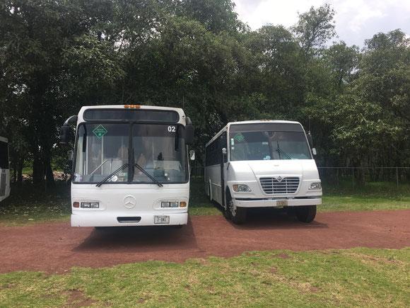 Transporte, Personal, Empleados, Empresas, Escolar