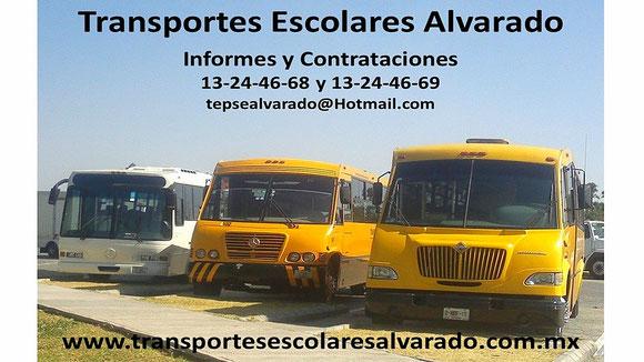 contrataciones,renta,alquiler,informes,cotizaciones,transporte seguro,transportes económicos